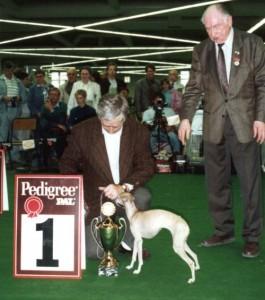 Weltsiegeraustellung 1991 in Dortmund. Die frisch gekürte Weltsiegerin Pepita vom Sausewind, mit dem Richter Herrn Nause und Vorführer Hans Peschges